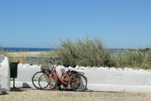 Paisagem Urbana/bicicletas