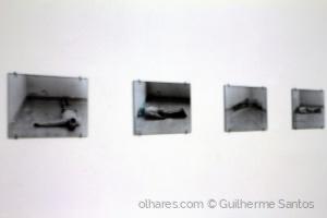 /Porto_Serralves_Museu_Expo_Silvestre Pestana_06_24