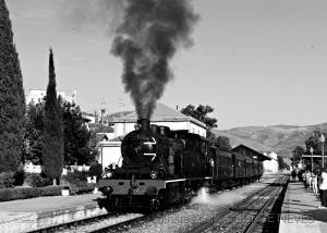 Fotojornalismo/Comboio Histórico do Douro ...