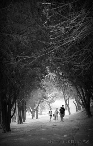 Paisagem Natural/Passeio pelo parque...