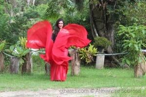 /Dança Flamenca