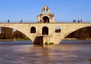 História/na ponte de Avignon