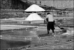 Gentes e Locais/Vida de Sal