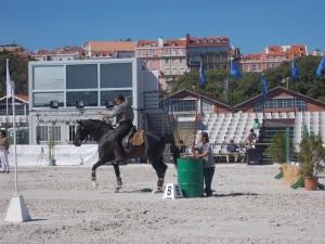 /Cavalo Alazão a Minha Paixão