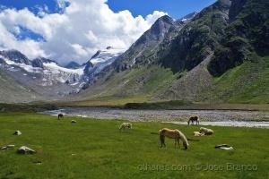 """Paisagem Natural/""""Tirol - Áustria.."""""""
