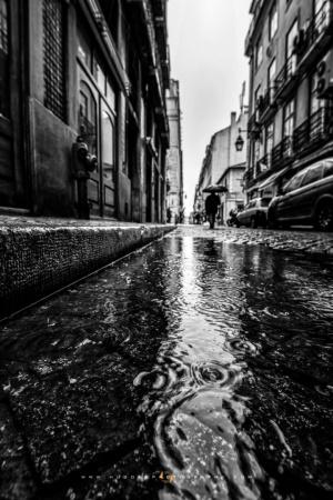 Gentes e Locais/RAIN