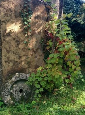 Outros/Recanto de jardim