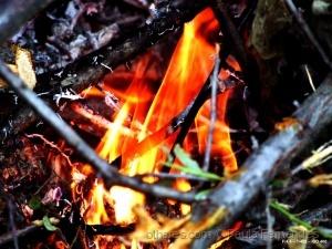 /Fire