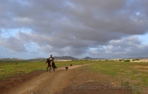 Gentes e Locais/Cavaleiro do deserto