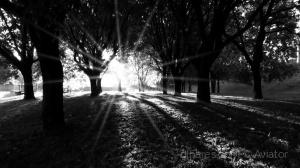 /Refração da luz