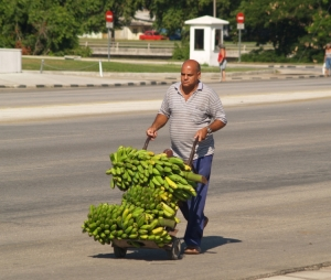 Gentes e Locais/O encantador de Bananas.