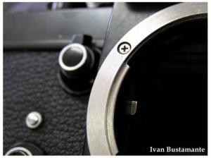 Macro/Nikon Aposentada 2
