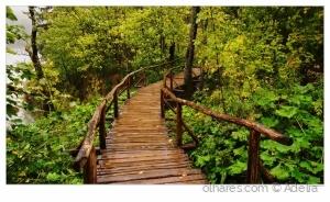 Paisagem Natural/Vamos passear....
