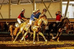 /HORSEBALL  ( ver descr. )