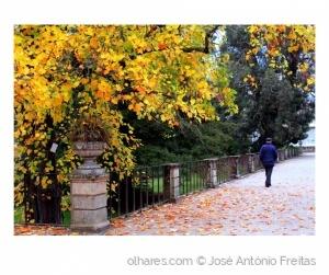 """/"""" Caminhar de Outono """""""