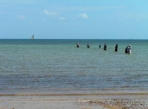 Gentes e Locais/Moçambique, pesca de cerco.