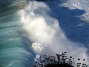 Paisagem Natural/Uma boa onda ... (ler p.f.)