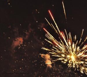 Outros/Buen Año Para Todos!!!!