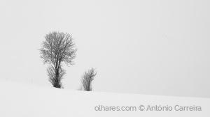 Paisagem Natural/Snow soul