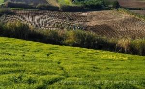 /Preparando os Campos para novas colheitas!