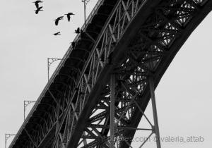 /A Ponte( ver)