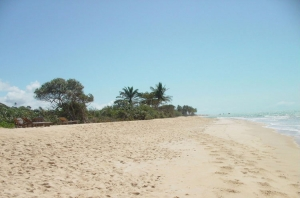 Paisagem Natural/Praia de Trancosso 2
