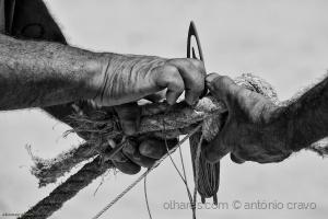Gentes e Locais/mãos de mar (11)