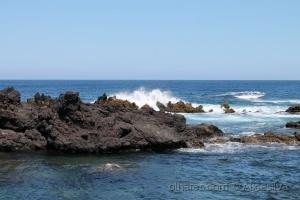 /Felicidade é um fim de tarde olhando o mar........