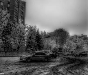/Quando  nevar , melhor estacionar