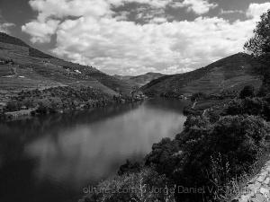 Paisagem Natural/Douro 2016