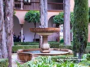 /Photo #1992 ... Jardim interior I (Ler)