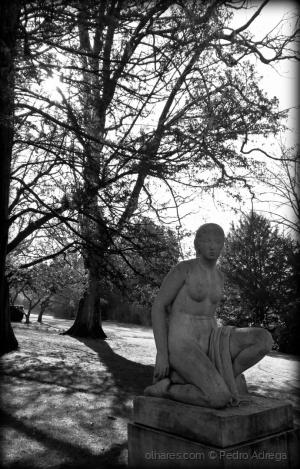 /A dama do parque