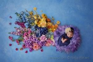 Retratos/colourful