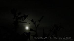 Outros/Lua Entre Espaços