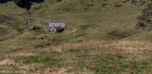 /la petite maison dans la prairie