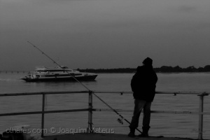 /A ver navios...