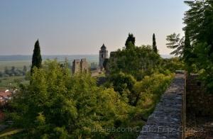 /Castelo de Montemor o velho