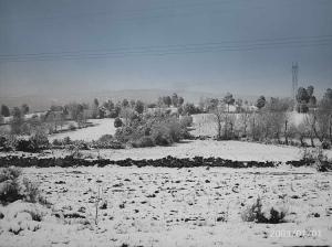 Outros/neve