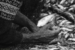 Gentes e Locais/mãos de mar (13)