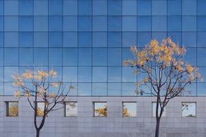 Paisagem Urbana/Coimbra 25FEV - ouro sobre azul