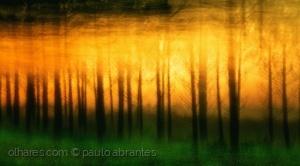 Abstrato/Solar Dip