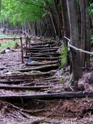 /Uma escada para o topo da serra
