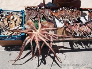 Gentes e Locais/Secagem de peixe - Nazaré