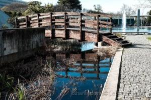 /A ponte, ou a fraternidade geográfica...... (ver t