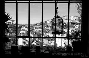 Outros/com vista para a cidade