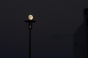 /A Lua pensava que era candeeiro (ler)
