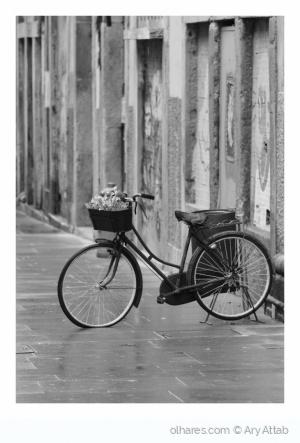 Paisagem Urbana/Na Rua das Flores