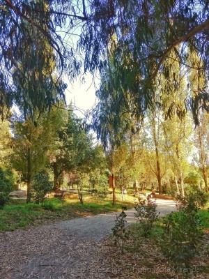 /Passeando  pelo parque !!!