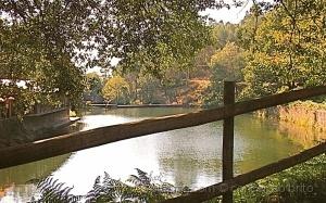 Paisagem Natural/O Vale do Rio Verde