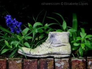 Gentes e Locais/Onde Judas perdeu as botas ...